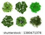 tree top view plan layout on... | Shutterstock . vector #1380671378