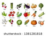set of drawn colored vegetables.... | Shutterstock .eps vector #1381281818