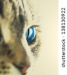 cat eye | Shutterstock . vector #138130922
