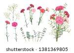 Set Floral Vectors Elements Fo...