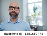 bearded middle aged man wearing ... | Shutterstock . vector #1381657478
