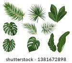 tropical palm leaves  jungle... | Shutterstock .eps vector #1381672898
