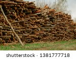 felled trees stacked.... | Shutterstock . vector #1381777718