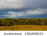 Small photo of A scenic view of dark cumulo-nimbus , nimbus and cumulus storm clouds over wetlands in Big Swamp parkland Bunbury Western Australia on a cloudy day in late autumn.