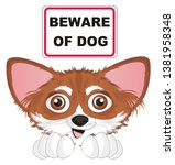 snout of chihuahua with banner   Shutterstock . vector #1381958348