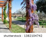 march 25  2019  douro valley ... | Shutterstock . vector #1382104742