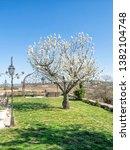 march 25  2019  douro valley ... | Shutterstock . vector #1382104748
