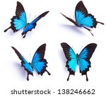 Stock photo blue butterfly papilio ulysses isolated on white background 138246662