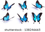 Stock photo blue butterfly papilio ulysses isolated on white background 138246665