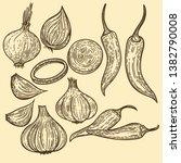 vector hand drawn set of... | Shutterstock .eps vector #1382790008