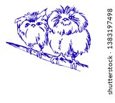 birds on a branch drawing on... | Shutterstock . vector #1383197498