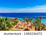 sunny resort beach with palm... | Shutterstock . vector #1383236372