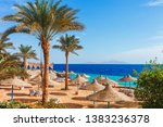 sunny resort beach with palm... | Shutterstock . vector #1383236378