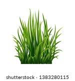 vector realistic green fresh... | Shutterstock .eps vector #1383280115