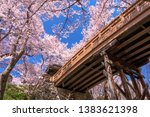 sakurakumokyo takato castle... | Shutterstock . vector #1383621398