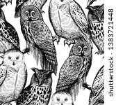 seamless pattern with owls.... | Shutterstock .eps vector #1383721448