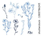hand drawn flax collection. ... | Shutterstock .eps vector #1383786245