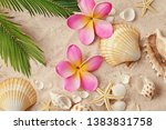 seashells and tropical flowers... | Shutterstock . vector #1383831758