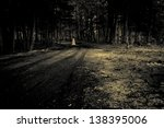 Horror scene. Female ghost in a forest - stock photo