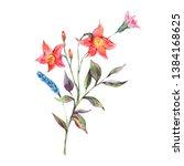 watercolor summer bouquet of... | Shutterstock . vector #1384168625