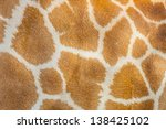 The Giraffe Hair Texture For...
