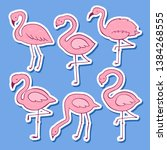 pink flamingo vector cartoon... | Shutterstock .eps vector #1384268555