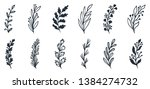 floral set of hand drawn...   Shutterstock .eps vector #1384274732