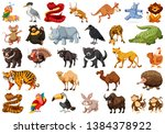large set of cute animals... | Shutterstock .eps vector #1384378922