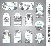 hand drawn herbs and wild... | Shutterstock .eps vector #1384606922