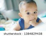 adorable asian baby boy sucking ... | Shutterstock . vector #1384829438