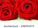 Two Red Roses Lying Side By Side