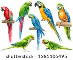 Stock photo large set of parrots birds on an isolated white background watercolor illustration hand drawing 1385105495