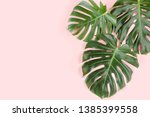 tropical palm leaves monstera... | Shutterstock . vector #1385399558