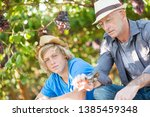 winegrowers in straw hats... | Shutterstock . vector #1385459348