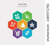 simple set of rosemary  sakura  ... | Shutterstock .eps vector #1385571782