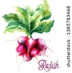radish isolated vector... | Shutterstock .eps vector #1385783468