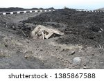 Small photo of Lava from volcano Etna in Sicily damaged house. Volcano interruption destroyed home. Etna interruption in Sicily.