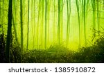 autumn forest in the morning... | Shutterstock . vector #1385910872
