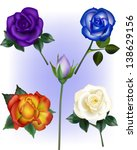 Rose Vector Illustrations - Purple, Blue, Flame Orange and White Roses.