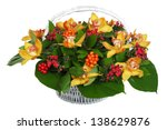 Bouquet of flowers in a white wicker basket: Orchid - large cream-colored flowers, pyracantha, Hypericum. The isolated image on a white background. - stock photo