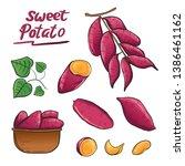 Sweet Potato Root Plant...
