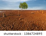 tree cracked dry land without... | Shutterstock . vector #1386724895