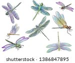 Stock photo summer dragonflies water light breeze over the pond and a flock of dragonflies flies it can 1386847895