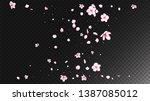 Stock vector nice sakura blossom isolated vector realistic blowing d petals wedding border japanese nature 1387085012