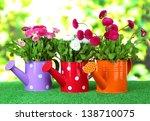 daisy flowers on grass on... | Shutterstock . vector #138710075