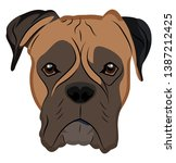 Boxer Illustration Vector On...