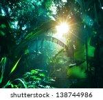 jungle in vietnam | Shutterstock . vector #138744986