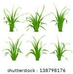 set of green grass  vector... | Shutterstock .eps vector #138798176