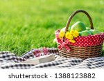 picnic table covered with... | Shutterstock . vector #1388123882