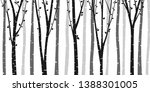 birch or aspen tree forest... | Shutterstock .eps vector #1388301005